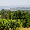 guide-vin-region-toscane