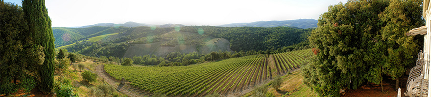 route-vins-florence-sienne